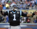 Carolina Panthers' Cam Newton (1) celebrates a touchdown made by Carolina Panthers' Jonathan Stewart during the first half of the NFL Super Bowl 50 football game against the Denver Broncos, Sunday, Feb. 7, 2016, in Santa Clara, Calif. (AP Photo/David J. Phillip)